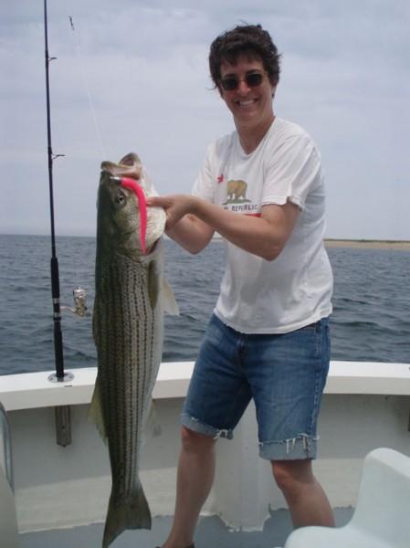 maddowfishing
